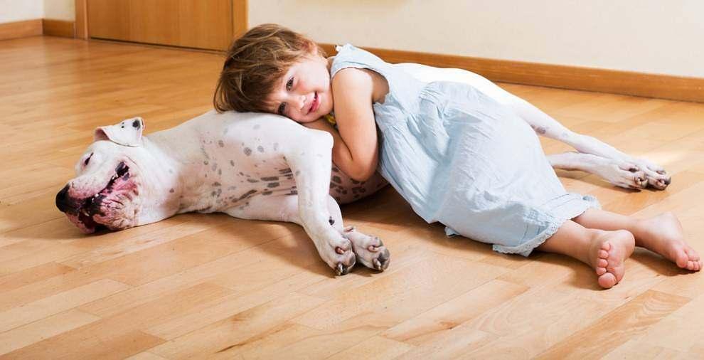 little-girl-on-dog