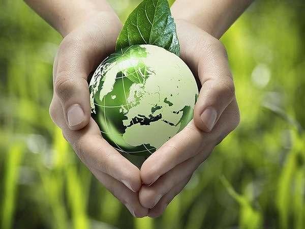 seguro-respetuoso-del-medio-ambiente