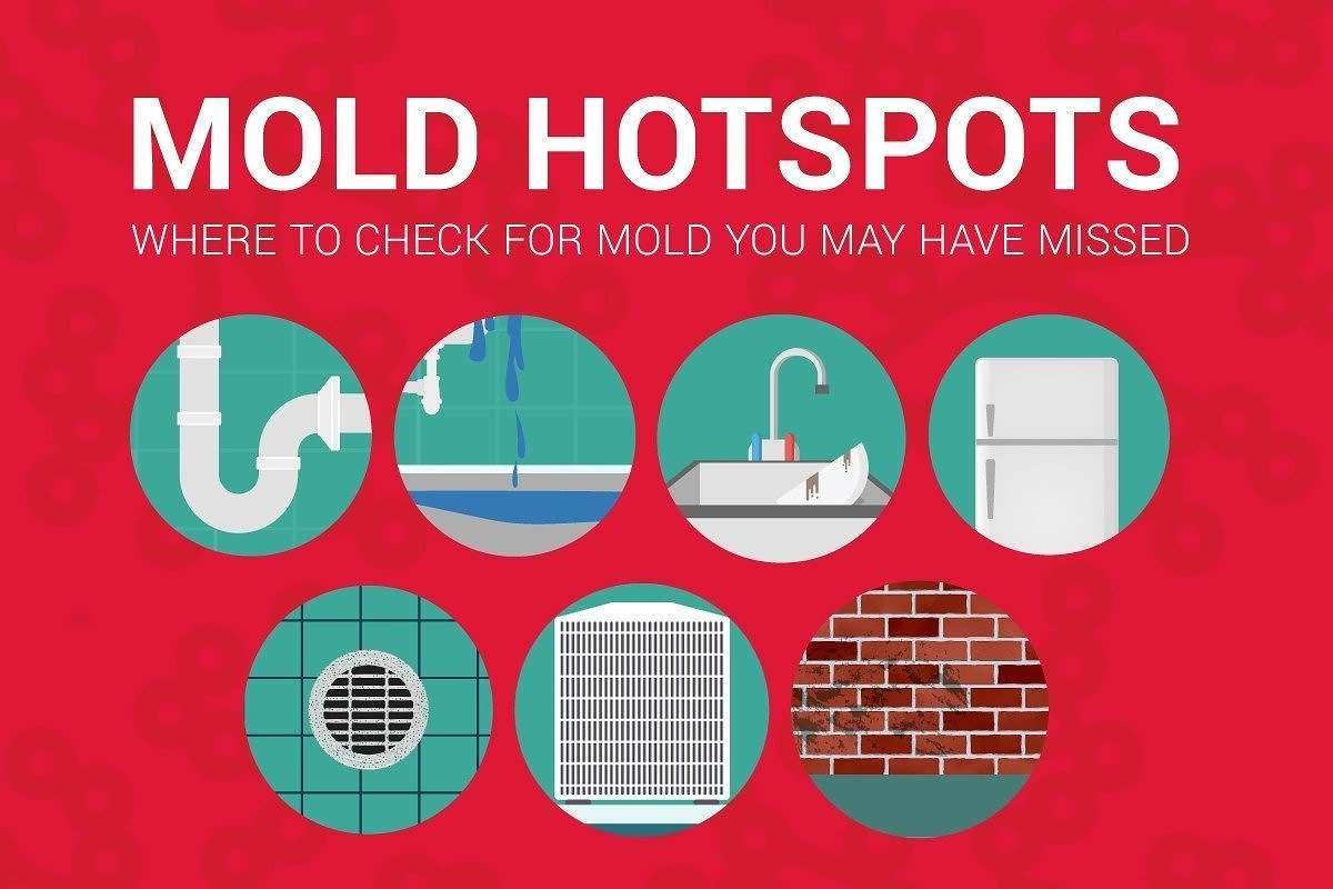 Mold Moho Facility Hotspots